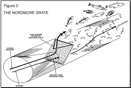 Nordmore Grate