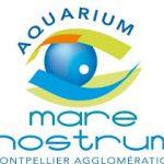 © Mare Nostrum