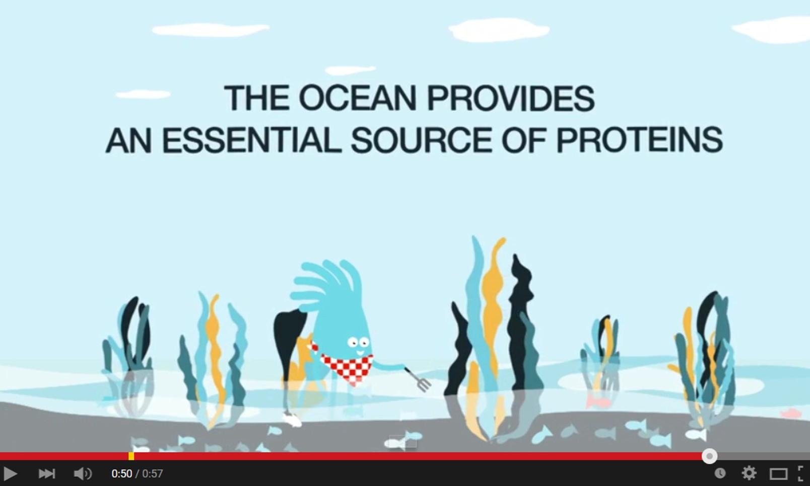 5 days until World Ocean Day