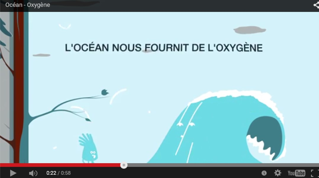 7 jours avant la Journée Mondiale de l'Océan - Océan & Oxygéne