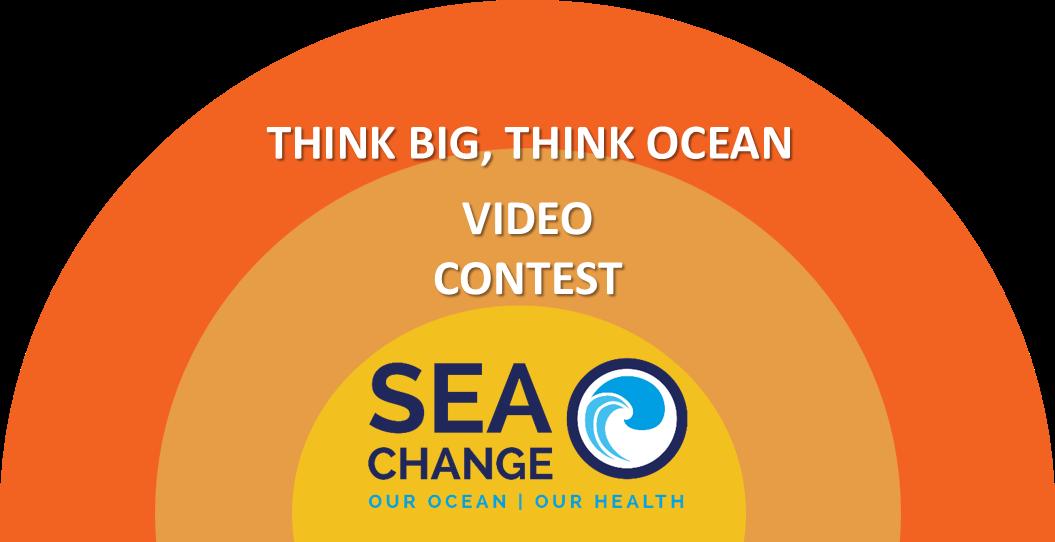 """Concours Vidéo """"Think Big, Think Ocean"""""""