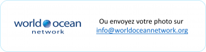 bouton e mail info fr