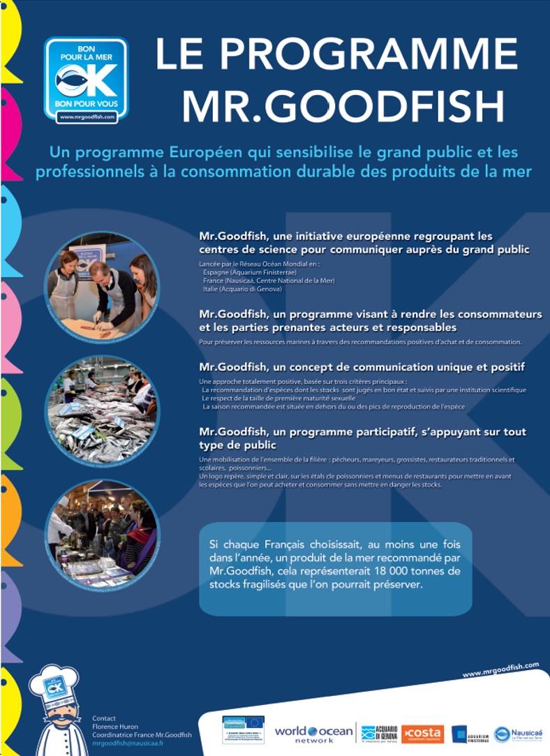 Poster Mr Goodfish