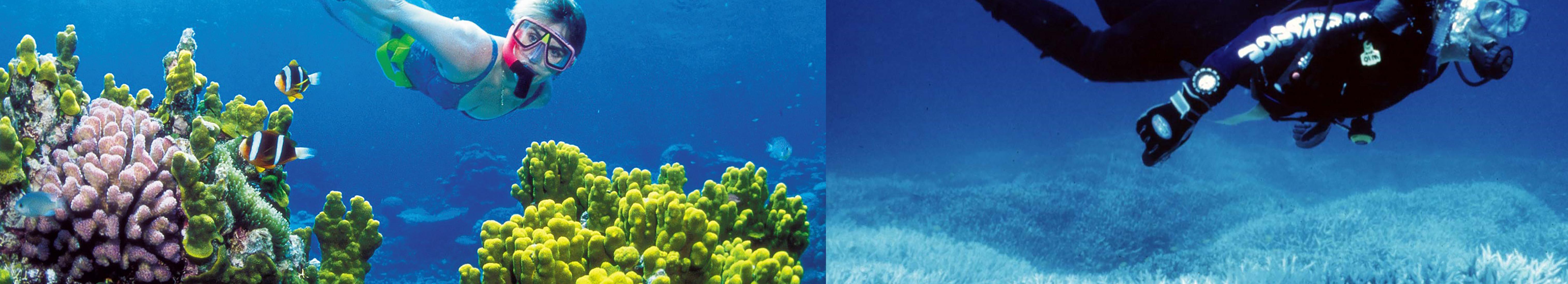 Une nouvelle dynamique Océan et Climat